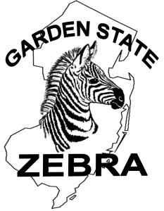 Garden State Zebra